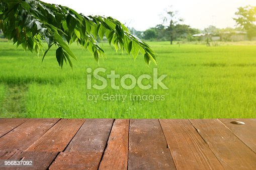 989111446istockphoto Empty wooden table place of free space with Leaf and rice field in morning sun light. Copy space for your display or montage 956837092