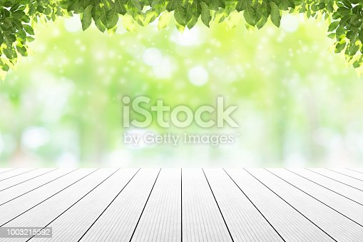 istock Empty wooden table with beautiful garden background blurred. 1003215592
