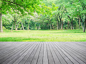 Empty wooden terrace and spring forest background
