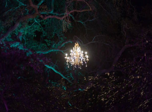 Enchanted forest - brightly lit chandelier magically hovering in the middle of the forest Enchanted forest - brightly lit chandelier magically hovering in the middle of the forest chandelier stock pictures, royalty-free photos & images