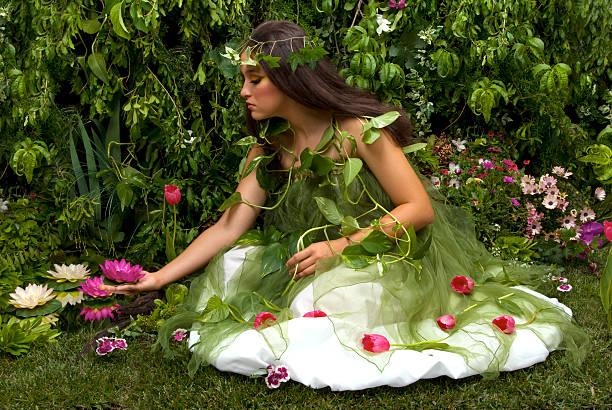 enchanted garden - indoor feen gärten stock-fotos und bilder
