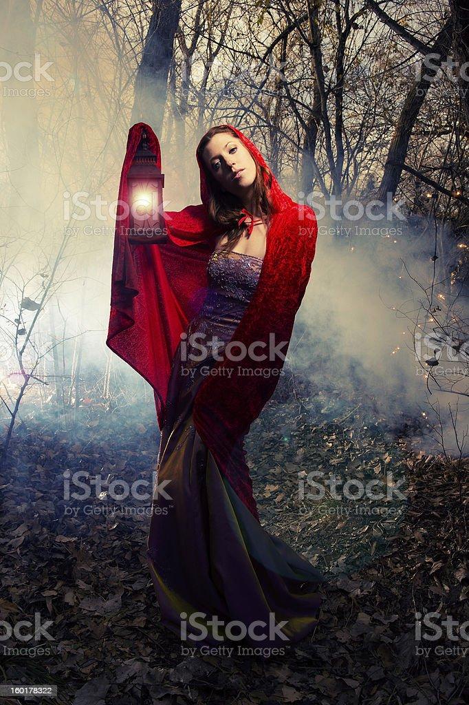 Enchanted Lantern royalty-free stock photo
