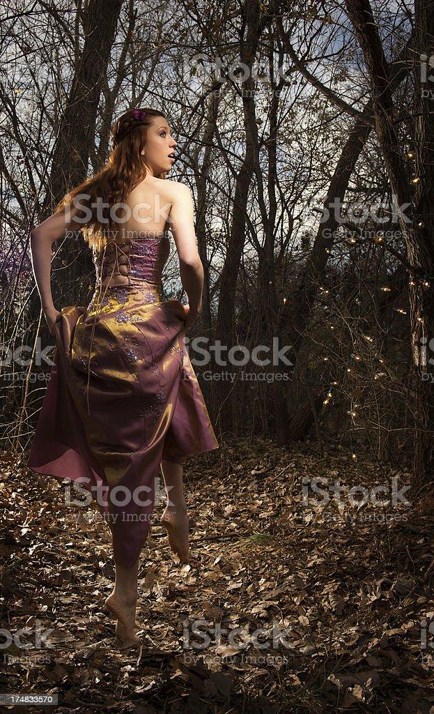 Enchanted Path royalty-free stock photo