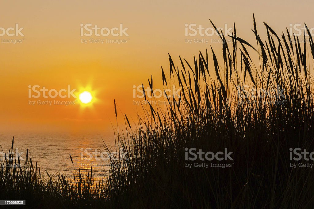 End of a summers day royalty-free stock photo