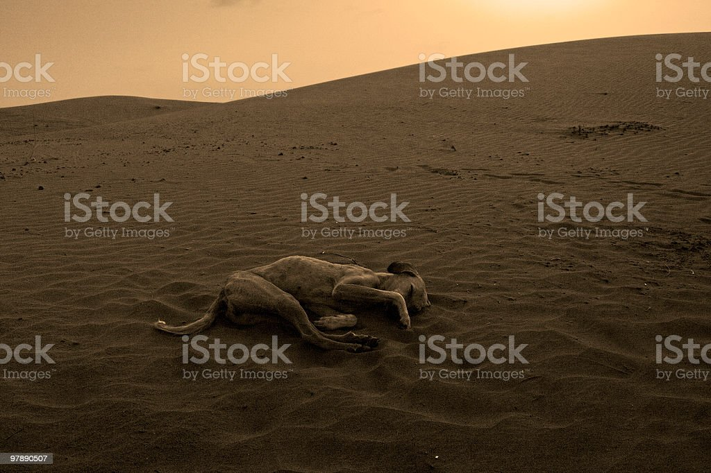 End of story royalty-free stock photo