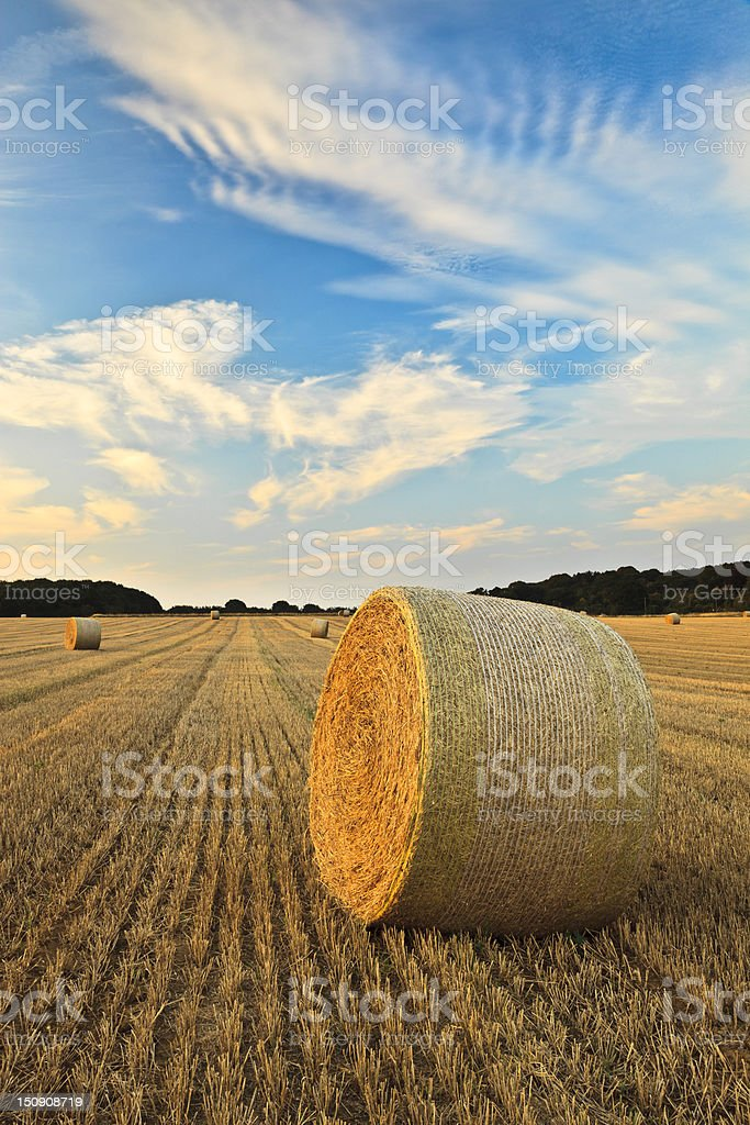 End of Summer stock photo