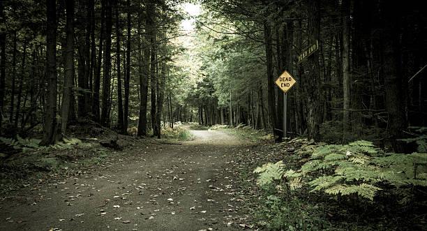 end of the road - wood sign isolated bildbanksfoton och bilder