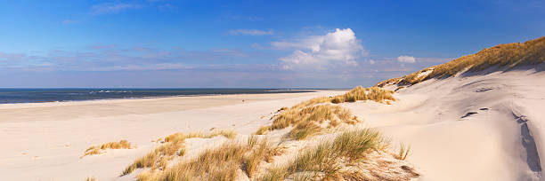endless beach on the island of terschelling in the netherlands - sand dune stock photos and pictures