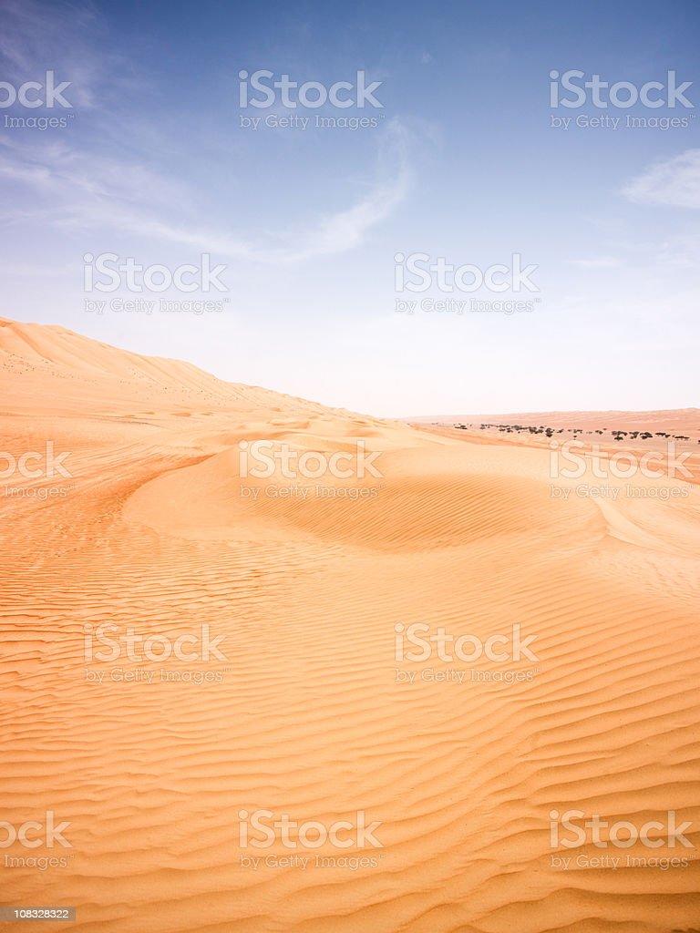 Endless Desert Sand Dunes royalty-free stock photo