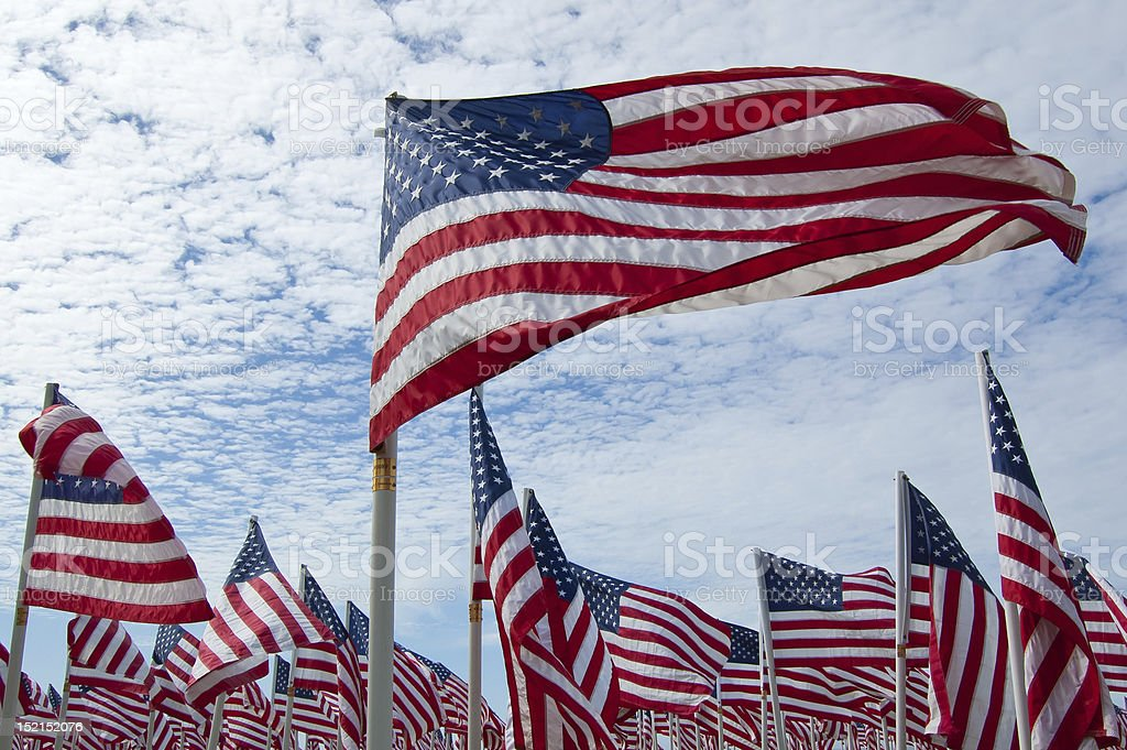 Endless field of American flags royalty-free stock photo