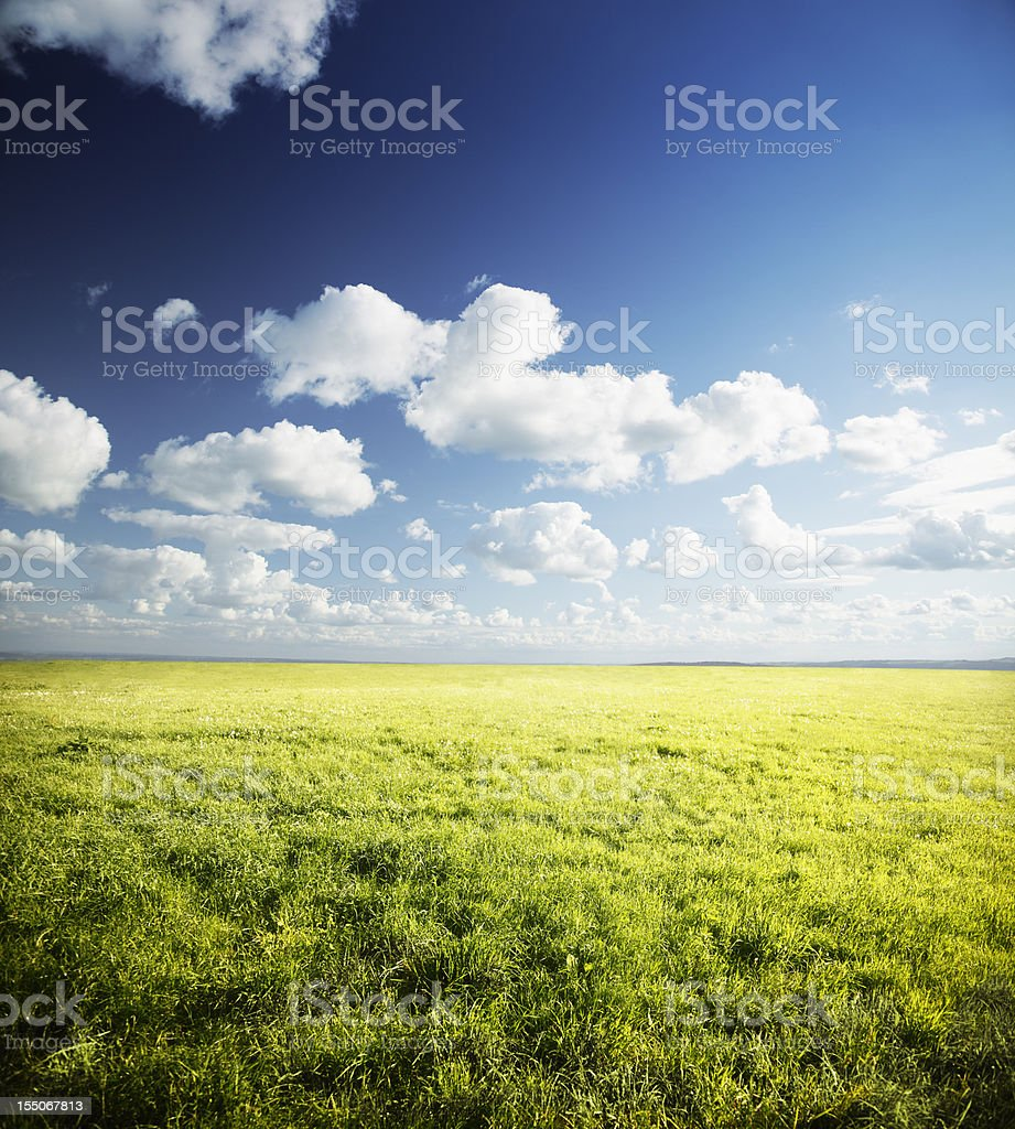 Endless Fields royalty-free stock photo