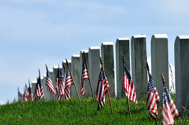 endless graveyard - arlington national cemetery stock pictures, royalty-free photos & images