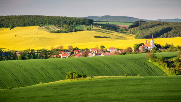 Endless Green Fields, Rolling Hills, Tractor Tracks, Spring Landscape under Blue Sky. South Moravia, Czech Republic Endless Green Fields, Rolling Hills, Tractor Tracks, Spring Landscape under Blue Sky. South Moravia, Czech Republic moravia stock pictures, royalty-free photos & images