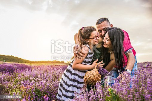 Happy family with baby boy in the lavender field at sunset