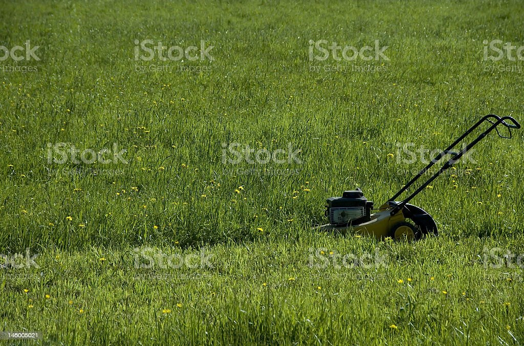 endless mowing stock photo