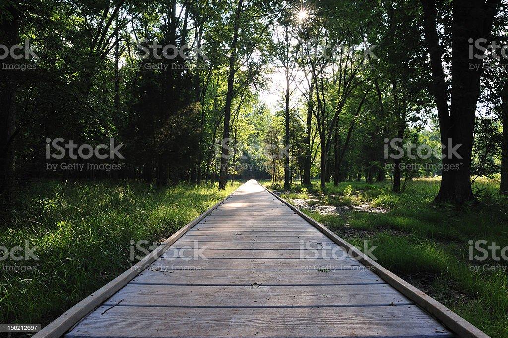 Endless Pathway stock photo