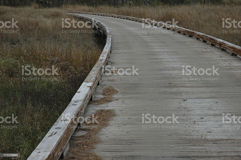 Endless Pathway royalty-free stock photo