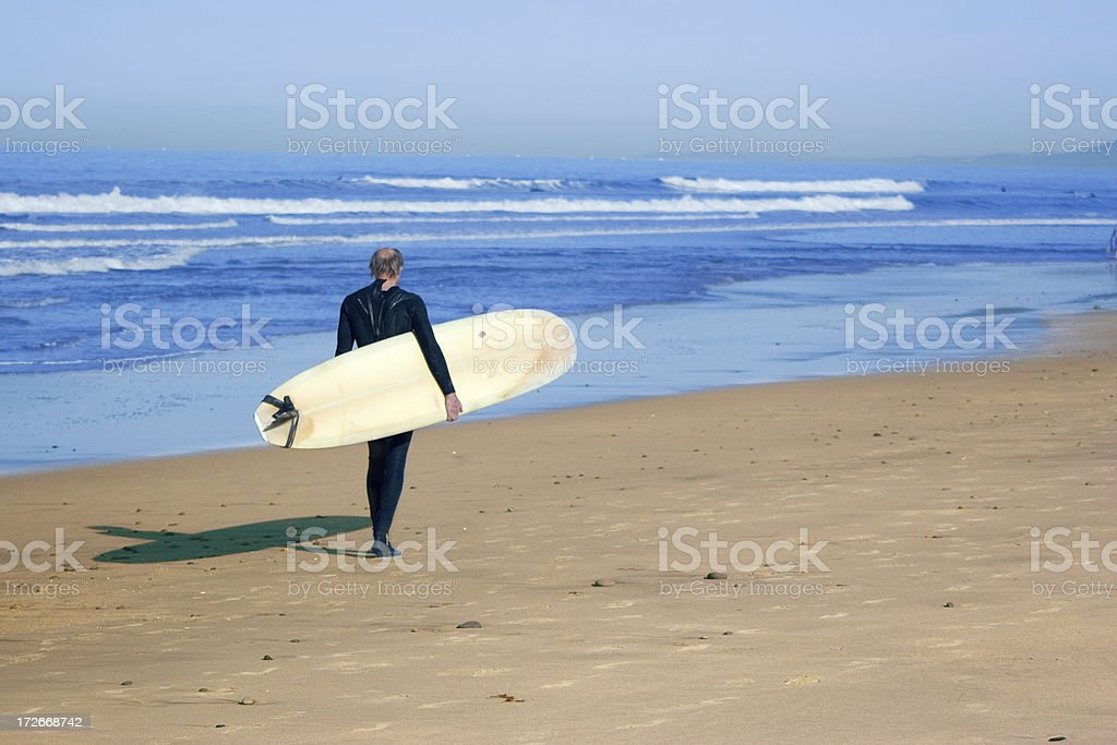 Endless Summer Surfing royalty-free stock photo