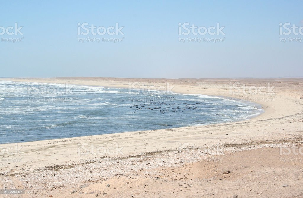 Endless wild Skeleton Coast, Namibia, Africa stock photo