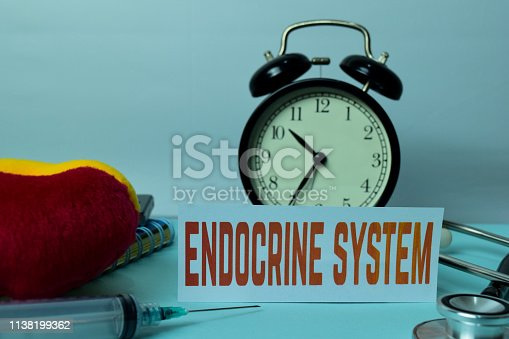 istock Endocrine System Planning on Background of Working Table with Office Supplies. 1138199362