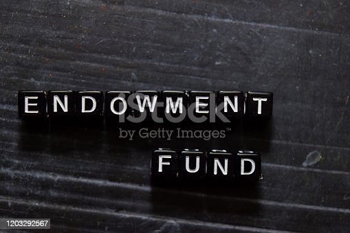 istock Endowment Fund on wooden cubes. On table background 1203292567