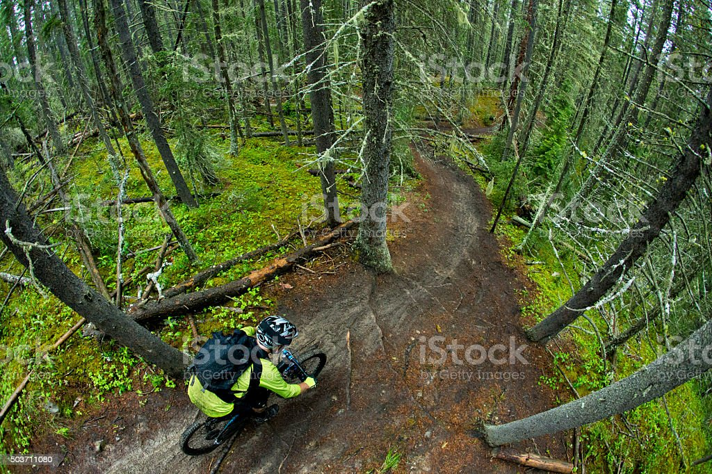 Enduro Downhill Mountain Bike Racer stock photo