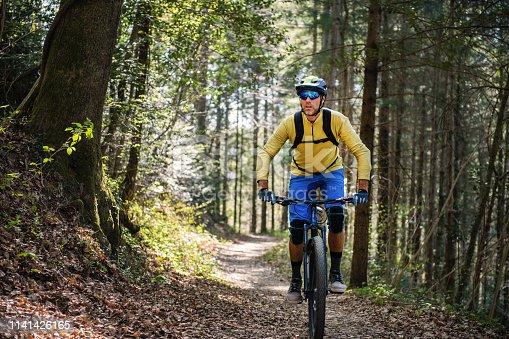 Man mountain biking through a pristine forest.