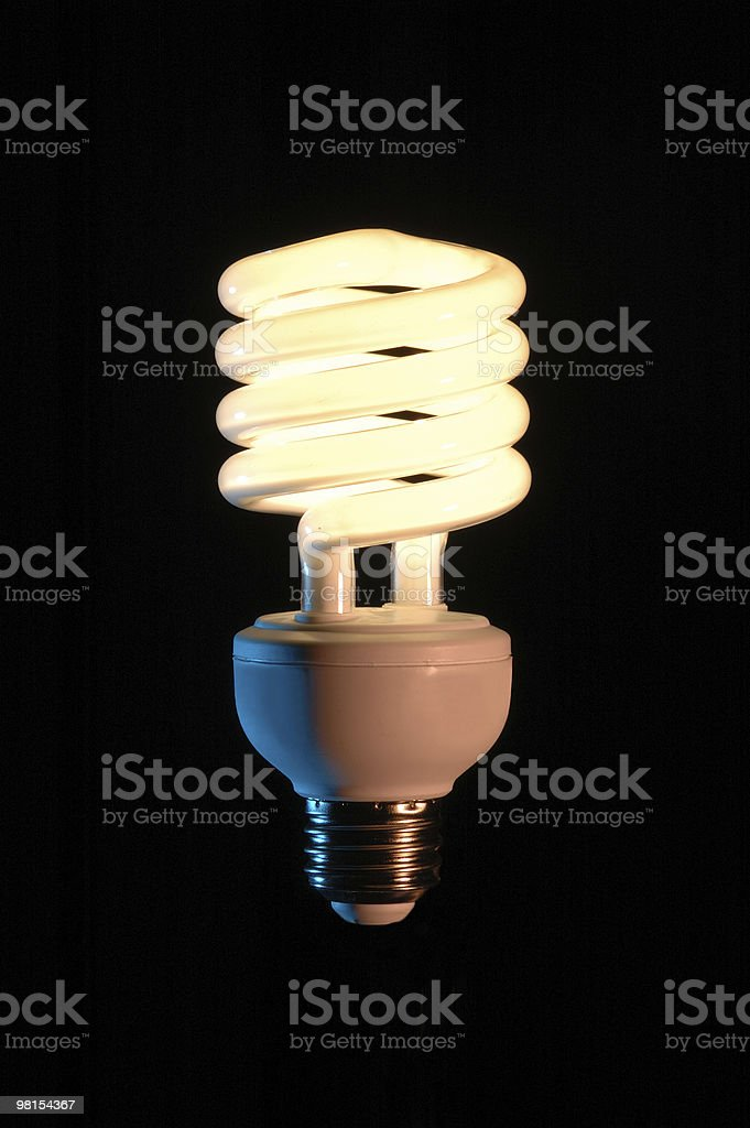 Energy Efficient Fluorescent Light Bulb royalty-free stock photo