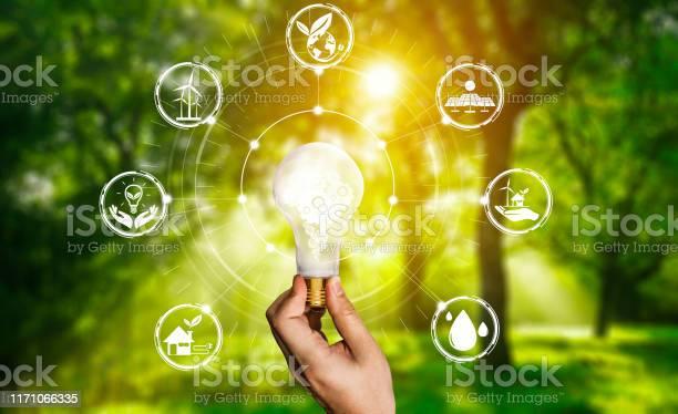 Energy innovation light bulb graphic interface picture id1171066335?b=1&k=6&m=1171066335&s=612x612&h=aa6xynt vsq1m12helk 9pr dxjcmxoeh4vau8km43q=