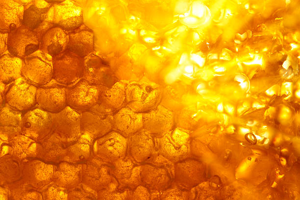 energia, - honeycomb imagens e fotografias de stock