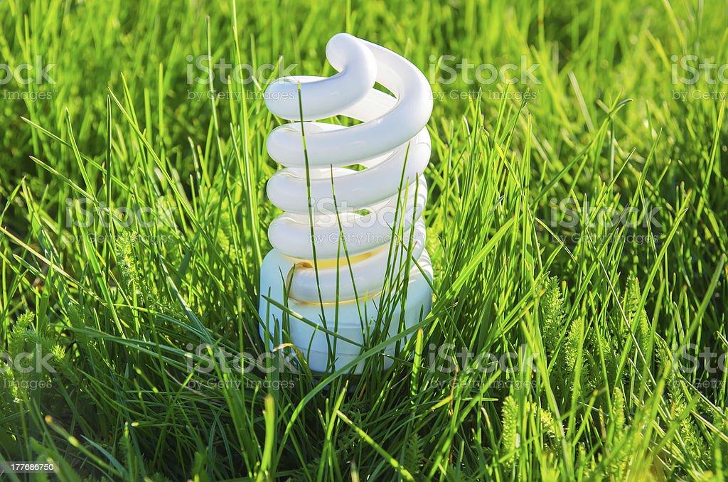 energy saving bulb in green grass royalty-free stock photo