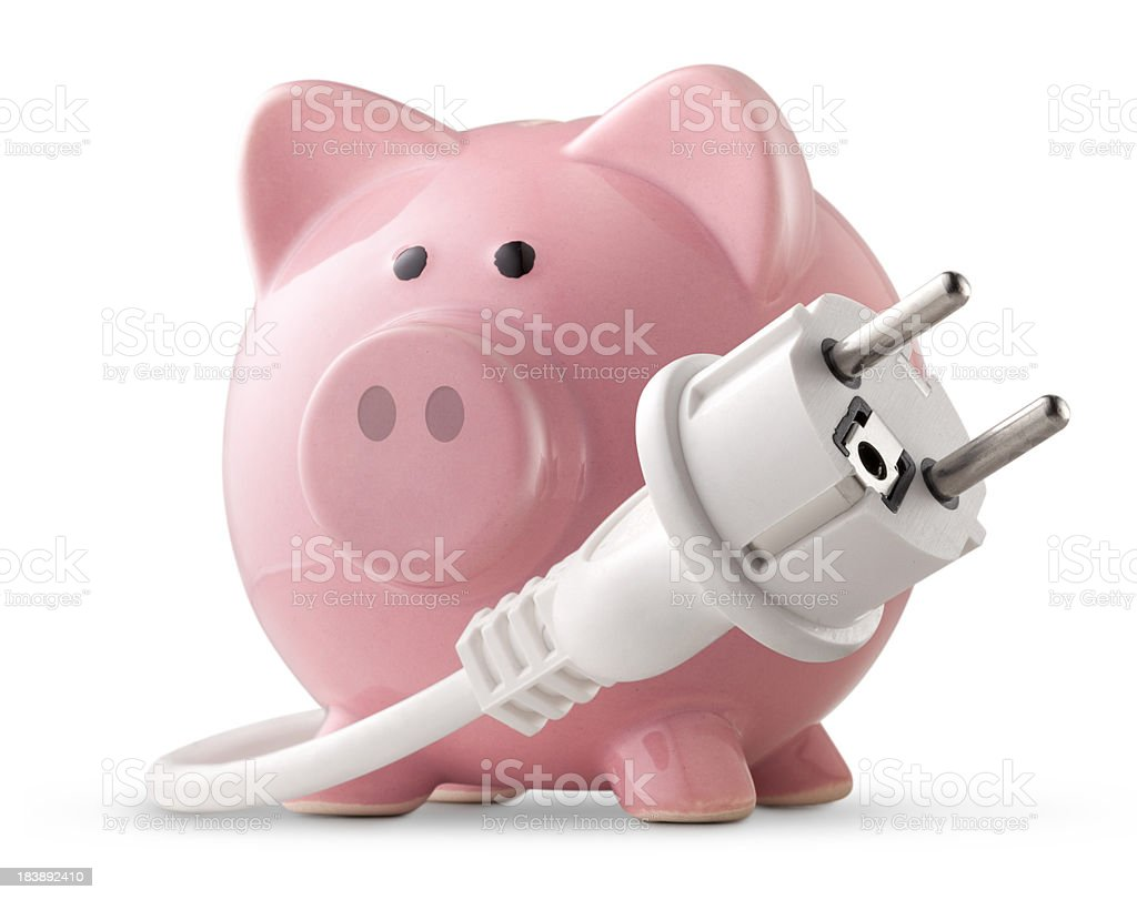 Energy saving. Electric plug with piggy bank. stock photo