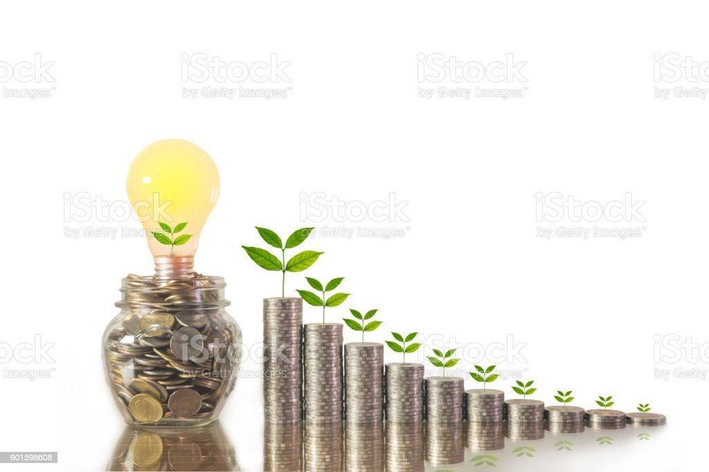 Energiesparende Glühbirne und Baum wächst auf Stapel von Münzen isoliert auf weißem Hintergrund. Sparen, Buchhaltung und Finanzkonzept. – Foto