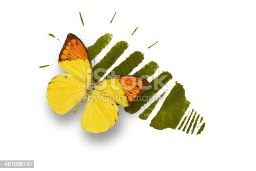 637797672 istock photo Energy saving light bulb with butterfly 481038747