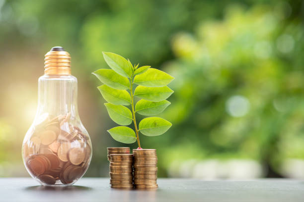 Energy saving. stacks of coins growing in light bulb and tree growing on stacks of coins and tree nature background. Saving, Natural energy and financial concept. stock photo