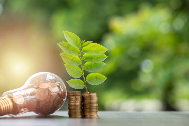 Ahorro de energía. pilas de monedas en la bombilla y el árbol que crece en pilas de monedas y de fondo de naturaleza de árbol. Ahorro, energía Natural y concepto financiero. - foto de stock