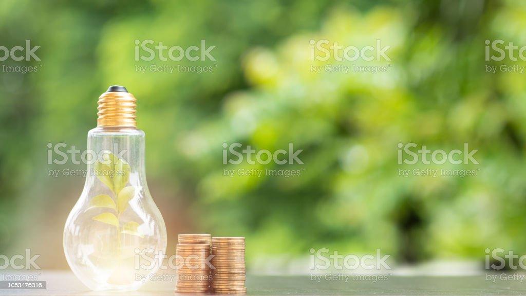 Energiesparen. Baum in Glühbirne und Stapel von Münzen auf Natur Hintergrund. Natürliche Energie und Finanzkonzept sparen. Lizenzfreies stock-foto