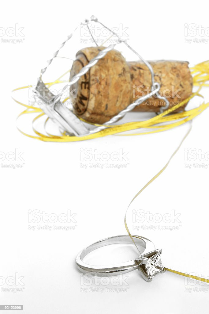 Engagement Party royalty-free stock photo