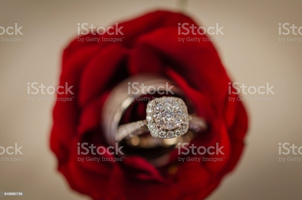 Engagement Ring And Wedding Band Are Placed Inside A Rose Stock Images Page Everypixel