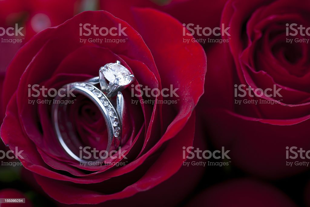 Engagement ring in red rose royalty-free stock photo