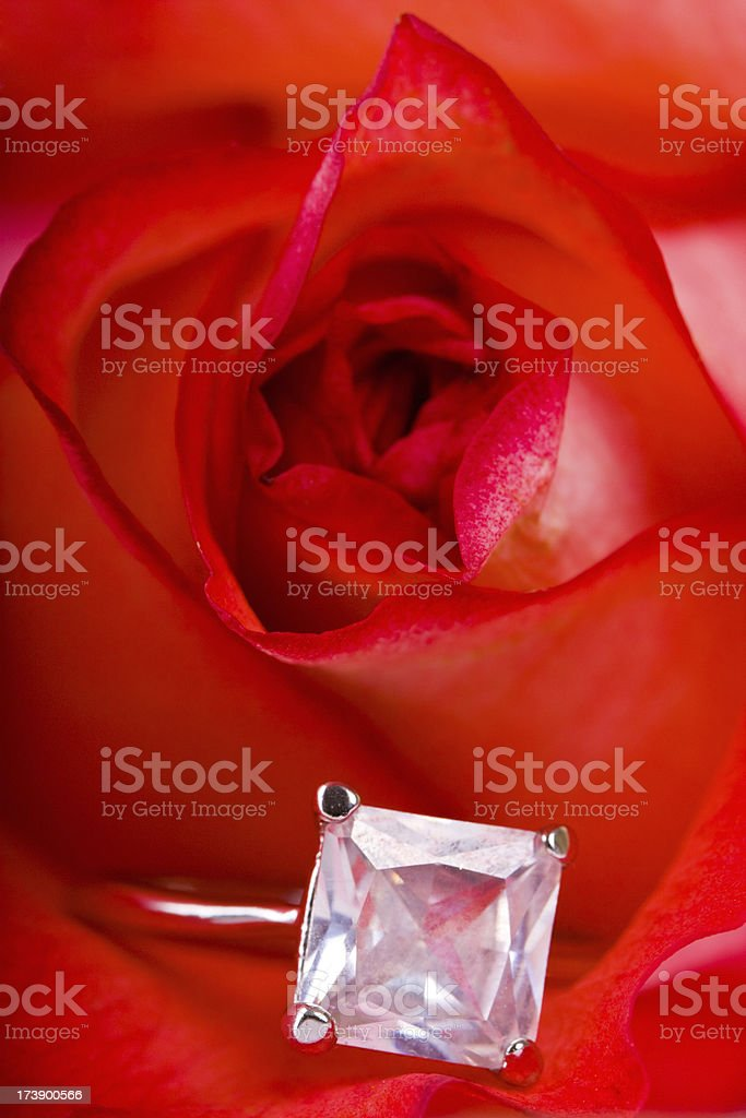 Engagement Ring in Rose royalty-free stock photo
