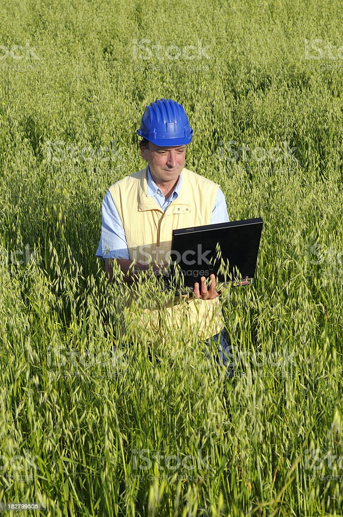 Engineer or Geologist with Laptop in a Wheat Field royalty-free stock photo