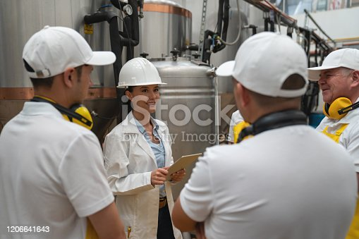 istock Engineer working at a brewery explaining the process to a group of operators in training 1206641643