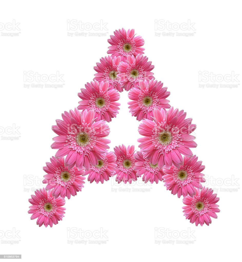 English Alphabet From Pink Flowers Stock Photo More Pictures Of