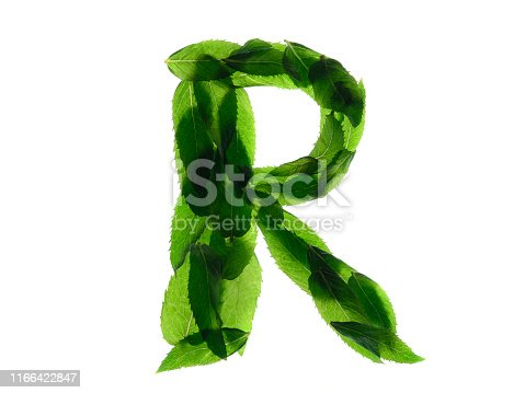 istock English alphabet made of a mint leaves isolated on white background 1166422847