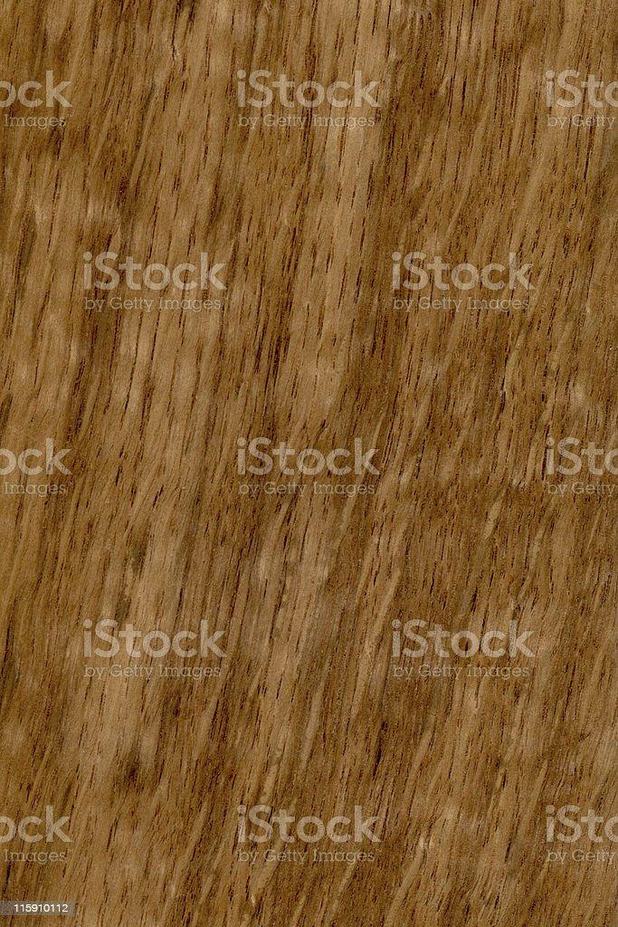 English brown oak wood, Quercus robur stock photo