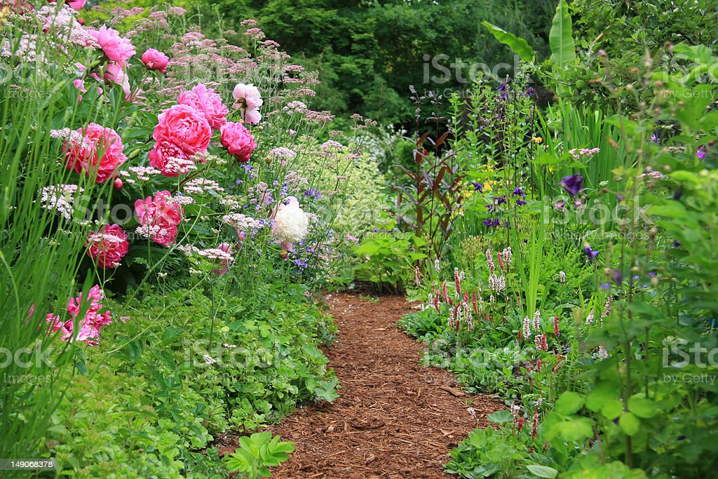 English cottage garden royalty-free stock photo