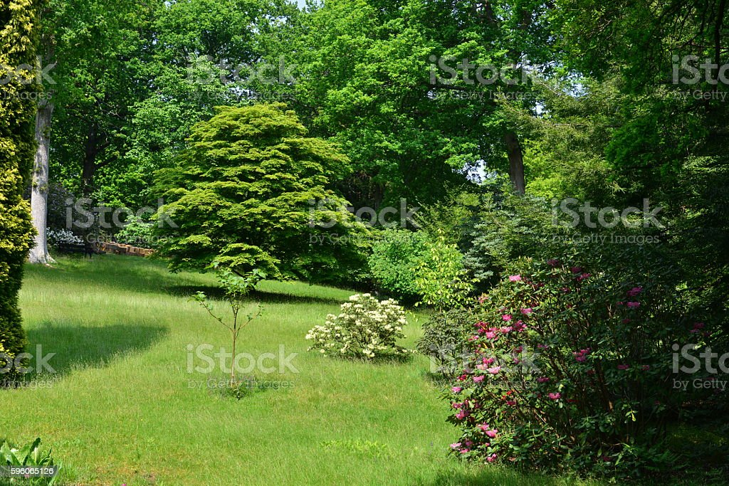 English country garden royalty-free stock photo