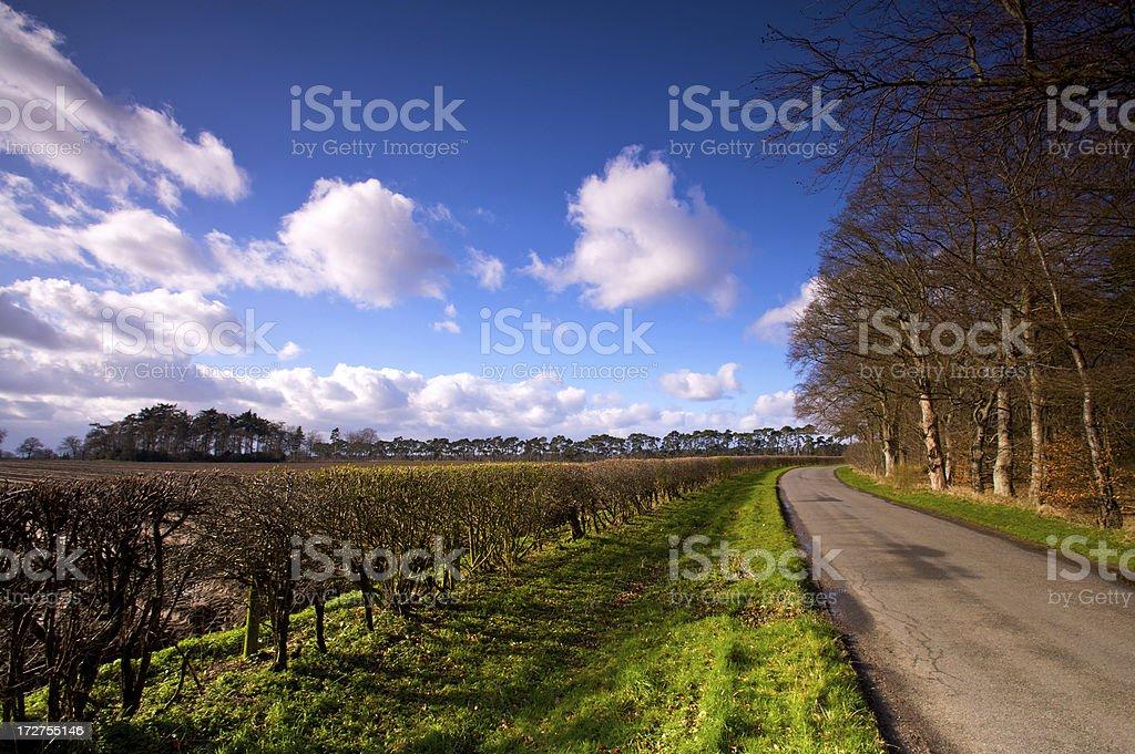 English country lane royalty-free stock photo