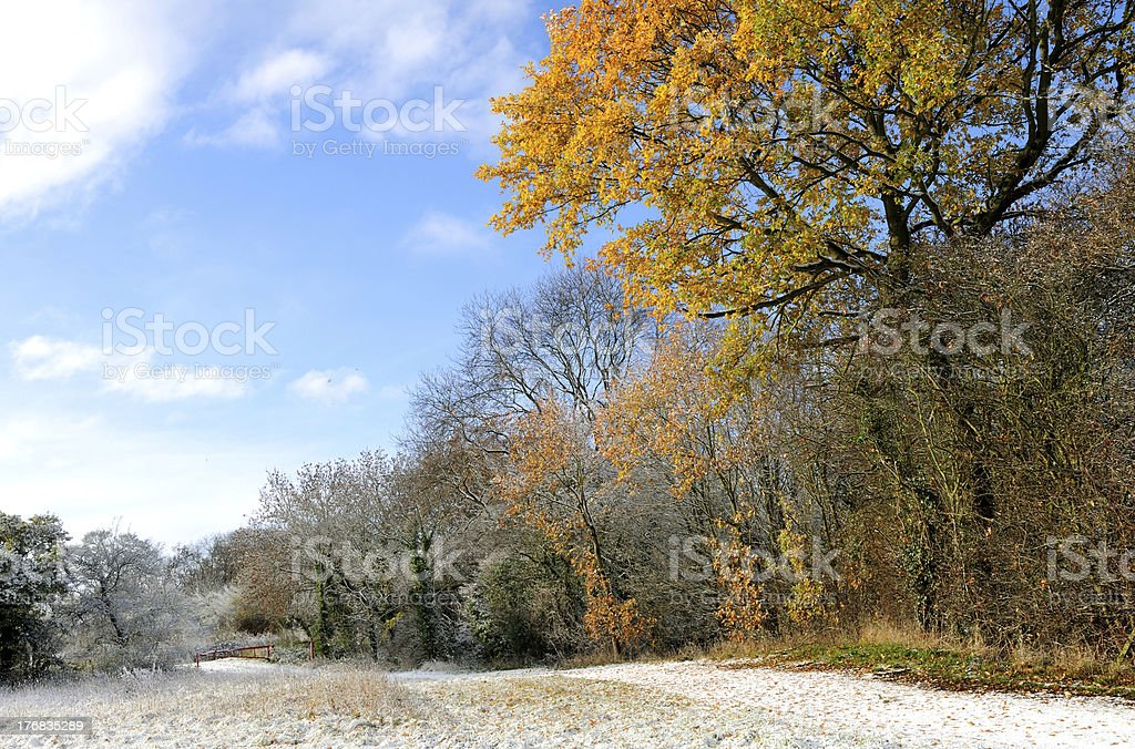 English Countryside Winter. stock photo